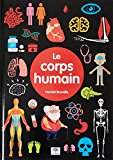Le corps humain Harriet Brundle illustré par Matt Rumbelow [traduction : Charlotte Grossetête]
